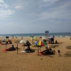 Beach bums and bohos.